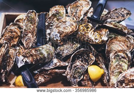 Closed Oysters With Lemon, Fresh Oyster Shell, Mollusks In Seafood Market, Aphrodisiac Sea Restauran