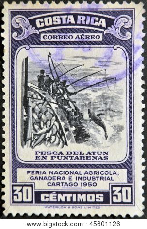 dedicated to agricultural fair livestock and industrial Carthage shows fishing for tuna in Puntarena