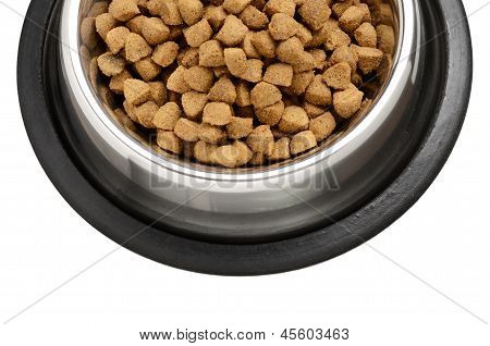 Cats and dogs dry food in the stainless steel bowl poster