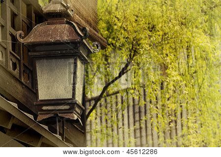 Old lamp with nice Willow