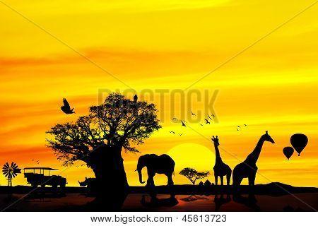 Conceptual African Safari Background.