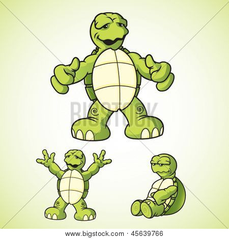 Cartoon vector turtles in various poses.