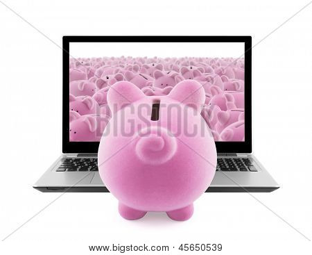 Piggy banks and laptop isolated on white