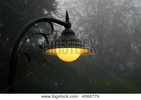 Misty Street Light