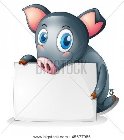 Illustration of a black pig holding an empty signage on a white background