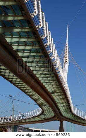 Calatrava Modern Bridge In Petah Tikva, Israel