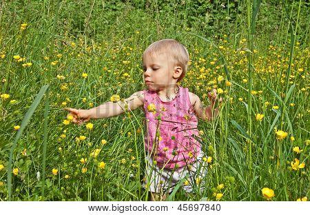 Cute Toddler Girl Playing In Long Grass