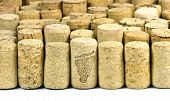pile of wine corks close-up on white poster