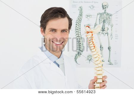Portrait of a smiling male doctor holding skeleton model in his office
