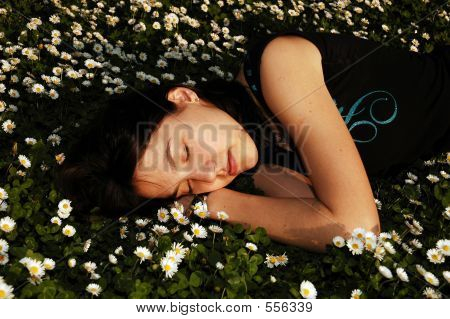 Sleeping The Flowers