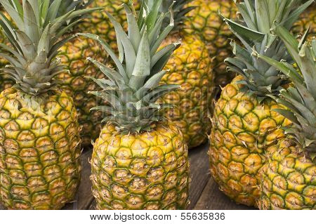 juicy golden pineapples