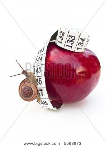 Apple with Snail on Measuring Tape