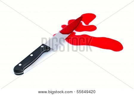Kitchen Knife With Puddle Blood