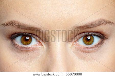 Macro image of human eyes