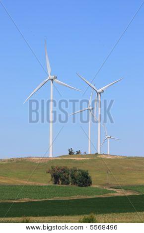 Wind Turbines Farm - Renewable Energy