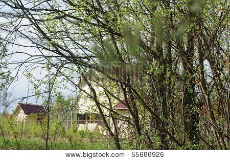 schöne Aussicht auf das rote Dach Häuser durch die Bäume