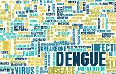 Dengue Fever Concept as a Medical Disease Art poster