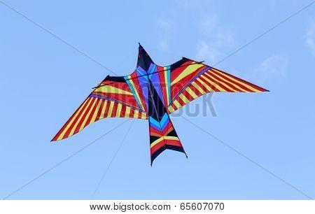 Firebird kyte in the sky