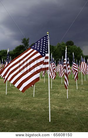 American Flags Wave In Breeze