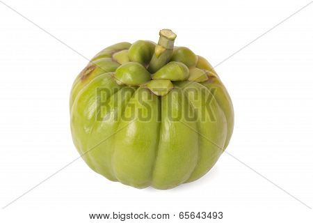 Garcinia Cambogia isolated on white background with path poster