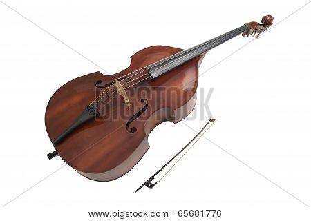 Double bass or string bass upright bass stand up bass or contra bass poster