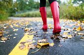 Autumn fall concept with colorful leaves and rain boots outside. Close up of woman feet walking in red boots. poster