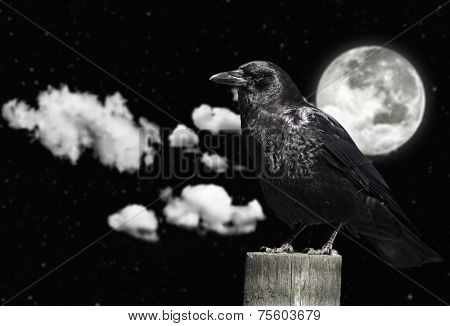 Clouds. moon and the crow