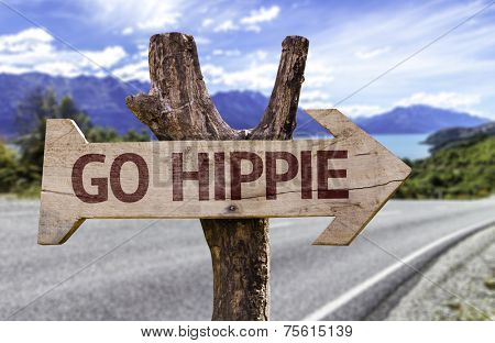 Go Hippie wooden sign with a landscape background