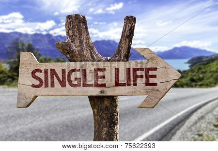 Single Life wooden sign with a road background