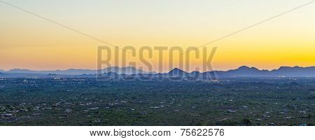 Sunset With Beautiful Green Cacti In Tuscon, Arizona