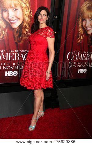 LOS ANGELES - NOV 5:  Laura Silverman at the