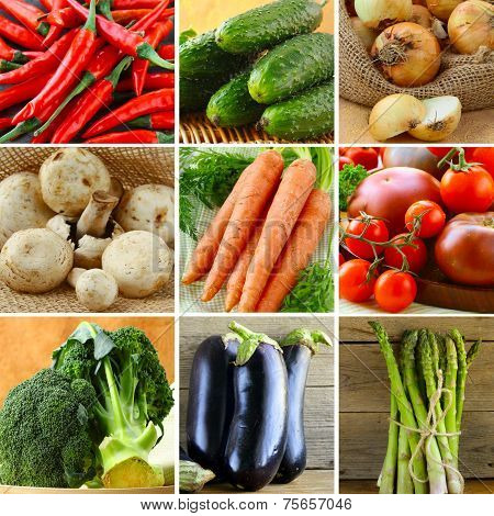 collage of different vegetables (eggplant, onions, carrots, tomatoes, peppers, asparagus)