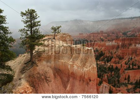 Bryce Canyon Ledge