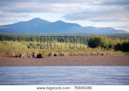 Mountain And Taiga At Kolyma River Russia Outback