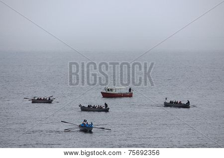 competetions of amateur rowing teams in Vladivostok, Russia