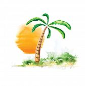 Tropical Palm Tree and Sun, watercolour vector illustration poster