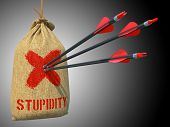 Stupidity - Three Arrows Hit in Red Target on a Hanging Sack on Green Bokeh Background. poster