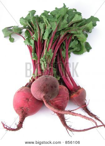 Fresh healthy bunch of beetroot