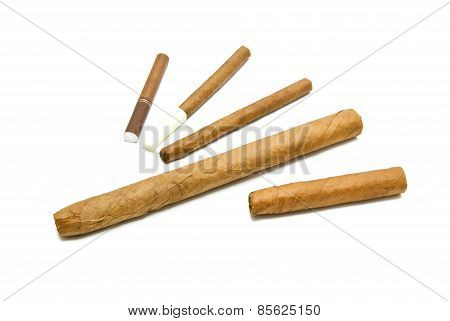 Different Cigars And Cigarillos