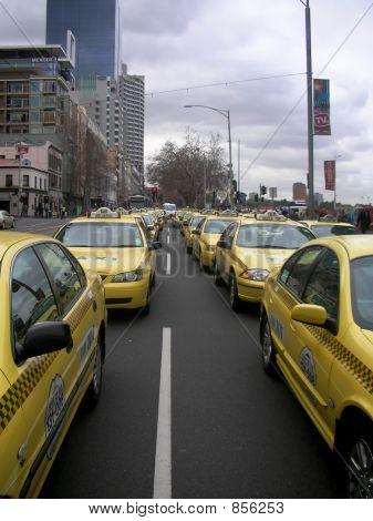 taxicolour