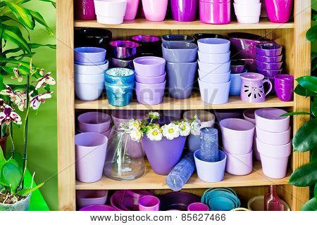 many new violet planters in the shelf poster