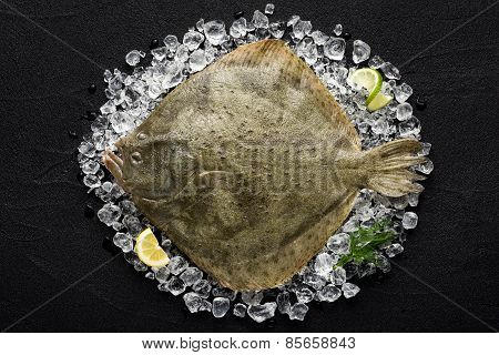 Fresh Turbot Fish On Ice On A Black Stone Table Top View