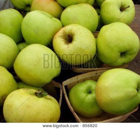 Apples 778