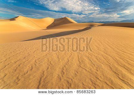 Sunrise in Sand Dunes