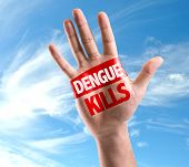 Dengue Kills sign painted on hand raised on sky background poster