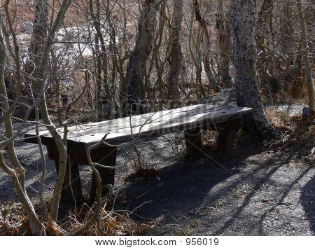 Hiking Bench