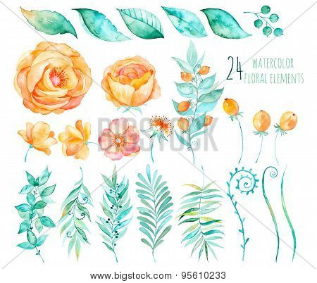 Colorful floral collection with roses,leaves,berries,branches and others.Hand drawn design
