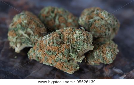 Medicinal Medical Marijuana Blueberry Headband