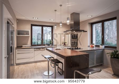 Designed Kitchen In Modern House