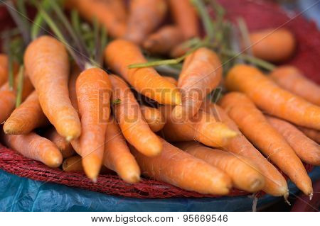 Carrot For Sell At Street Market